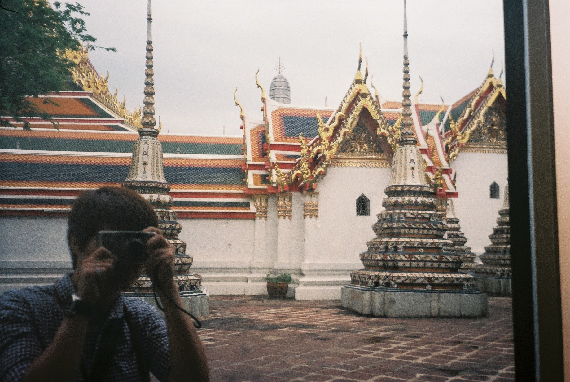 Wat Pho Film Photography Contax TVS